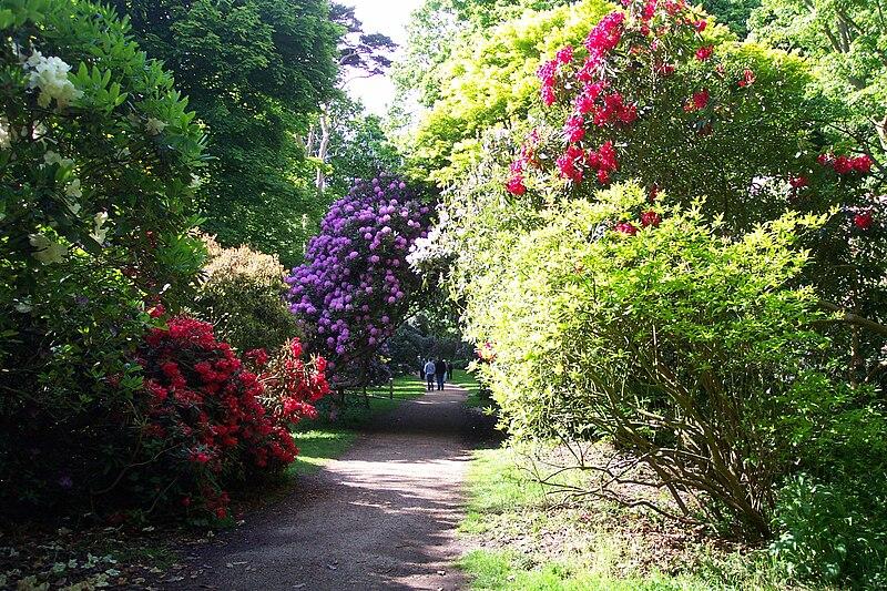 Edinburgh Gardens Dog Park