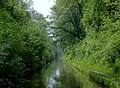 Shropshire Union Canal at Woodseaves Cutting, Shropshire - geograph.org.uk - 1333468.jpg
