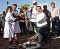 Siembra del Primer arbol de Cacao del proyecto Maya Biosana 01.jpg