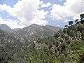 Sierra de Almijara (9085418811).jpg