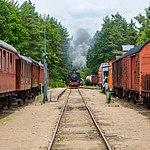Skånska järnvägar - Ångtåget på Österlen 3.jpg