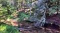 Slagle Township, MI, USA - panoramio (1).jpg