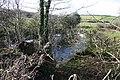 Small Pond - geograph.org.uk - 123831.jpg