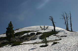 Snow Covered Sentinel Dome.jpg