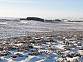 Snowy panorama from the Foumart Hills (13, SW - Glenhill Plantation) - geograph.org.uk - 1658005.jpg