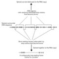 Split Gene Theory figure 3.png