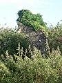 St Thomas of Canterbury Church Ruins, Westley - geograph.org.uk - 922034.jpg