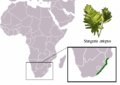 Stangeria eriopus distribution.png