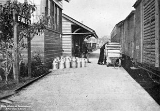 Eudlo railway station - Cream cans standing on the platform of the Eudlo railway station, 1932