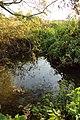 Steenmeersbeek, Grotenberge 01.jpg