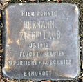 Stolperstein-Hermann Ziegellaub-Koeln-cc-by-denis-apel.jpg