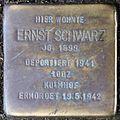Stolpersteine Köln, Ernst Schwarz (Nußbaumerstraße 7).jpg