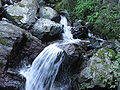 Streams (Yourou Waterfall).JPG