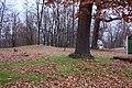 Sumnerville Indian Mounds.jpg