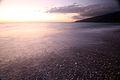 Sunset (3340941771).jpg