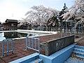 Swimming Pool - Niigata City Sasayama Elementary School.jpg