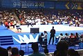 Taekwondo event at the 2011 Pan American Games (cropped).jpg