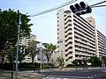 Takashimadaira danchi overview 2009.JPG