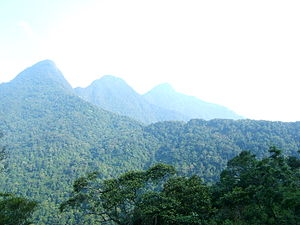 Tuyên Quang Province - Tam Dao mountain range.