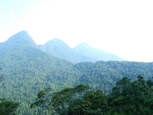 Tam Dao mountain range