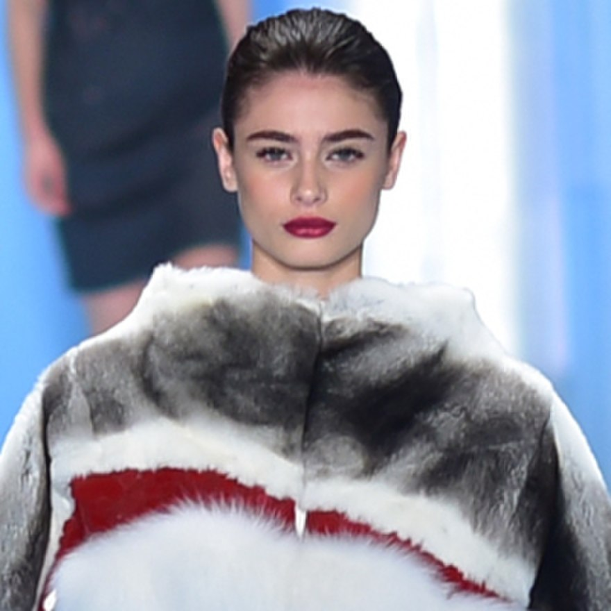Taylor Hill Model The Reader Wiki Reader View Of Wikipedia