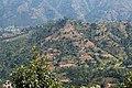 Terrace Farming in Nepal in Rakathum VDC-0360.jpg