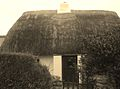 Thatched house.JPG