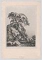 The Juniper Tree, Fontainbleu MET DP874291.jpg