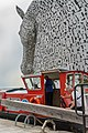The Kelpies with Wooden Spoon Seagull 1.jpg