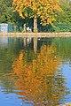 The Lake, Ropner Park - geograph.org.uk - 982652.jpg