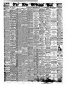 The New Orleans Bee 1860 November 0081.pdf