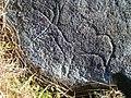 The Roebuck Stone - carving detail - geograph.org.uk - 132248.jpg