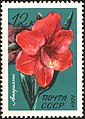 The Soviet Union 1971 CPA 4083 stamp (Amaryllis).jpg