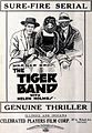 The Tiger Band (1920) - 1.jpg