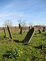 The graveyard at St Mary's Church - geograph.org.uk - 712445.jpg