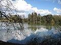The lake at Eastnor Castle - geograph.org.uk - 744209.jpg