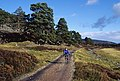 The track from Linn of Dee - geograph.org.uk - 918345.jpg