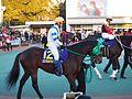 Tokyo Daishoten Day at Oi racecourse (31947212186).jpg