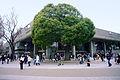 Tokyo bunka kaikan01 1920.jpg