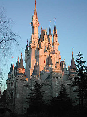 Disney's Magic Kingdom.