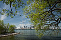 Toronto skyline framed by trees on the Toronto Islands May 2013.jpg