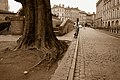 Toulouse - Rue Riguepels - 20120123 (2).jpg