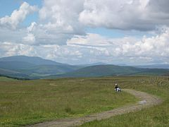 Track from Loch Moraig to Carn Liath - geograph.org.uk - 712385.jpg