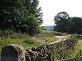 Track leading down to Edensor - geograph.org.uk - 1430820.jpg