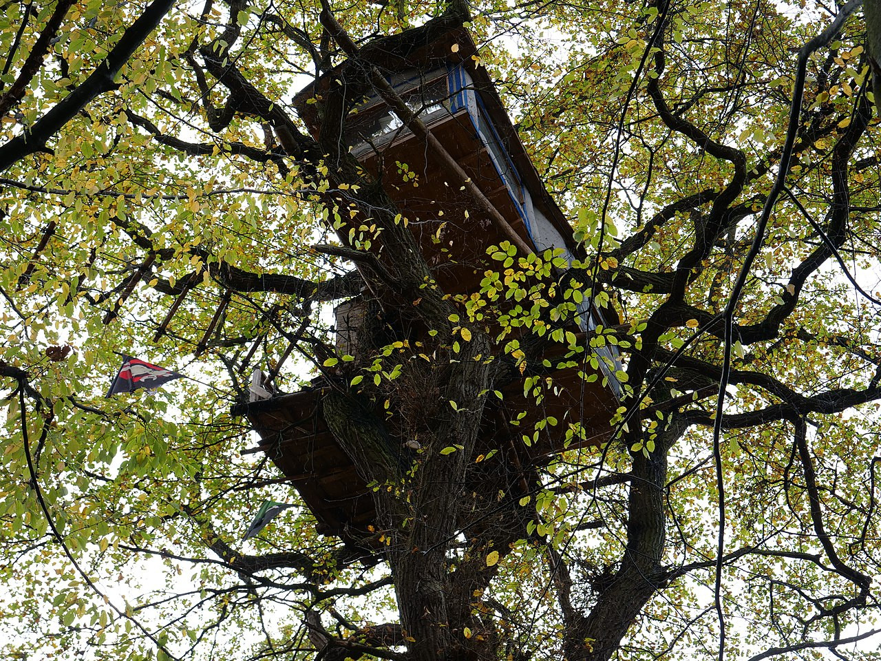 Treehouse in the Hambach forest 04.jpg