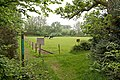 Triangular field bounded by Avon Valley Path, near Moyles Court - geograph.org.uk - 804086.jpg