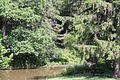 Trough Creek State Park - panoramio (3).jpg