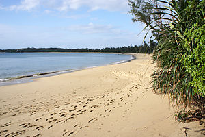 Iriomote Island - Image: Tudumari no hama Iriomote Island Japan 10bs 4500
