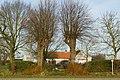 Twee gekandelaarde linden als welkomstbomen te Zwalm - 372561 - onroerenderfgoed.jpg