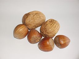 Two walnuts and four hazelnuts